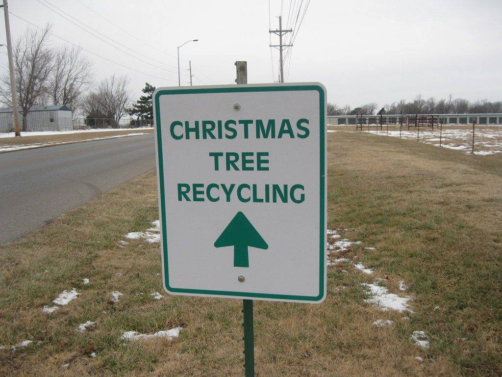 How to Recycle Christmas Tree Lights This Holiday Season ...