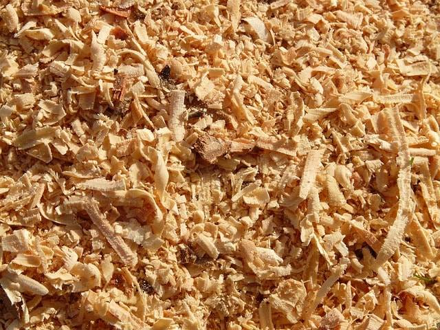 sawdust from wood