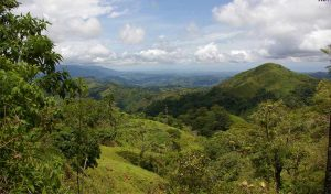 Featured image for Costa Rica Might Prove To The World That Zero Emissions Is A Possible Goal article