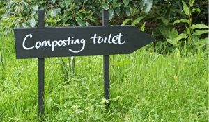 Featured image for DIY composting article