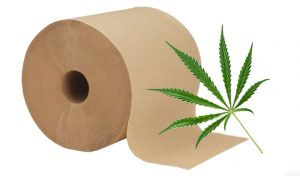 Featured image for hemp toilet paper article