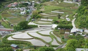 Featured image for Meet Kamikatsu - Japan's Town With A Zero Waste Policy article