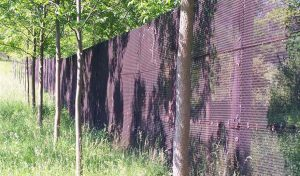 Featured image for Former West-East German Border Will Become Green Oasis, German Government Says article