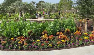 Featured image for New Houston Botanic Gardens Create a Green Paradise in America's Fourth-Largest City article