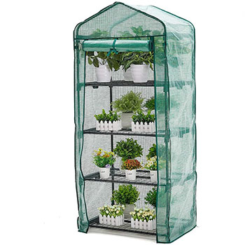 A single AMERLIFE 4 Tier Mini Greenhouse