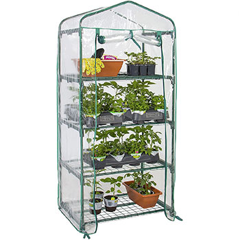 A single Best Choice Products 4-Tier 27x19x63-inch Mini Greenhouse