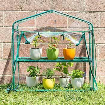 A single Educational Insights GreenThumb Greenhouse