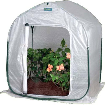 A single Flower House PlantHouse 2 Pop-Up Plant House