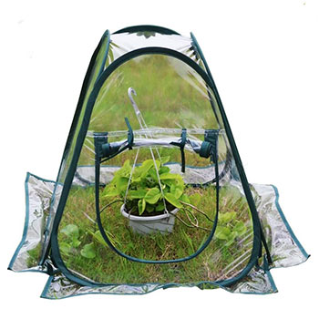 A single Mini Pop up Greenhouse Small Indoor Outdoor Gardening