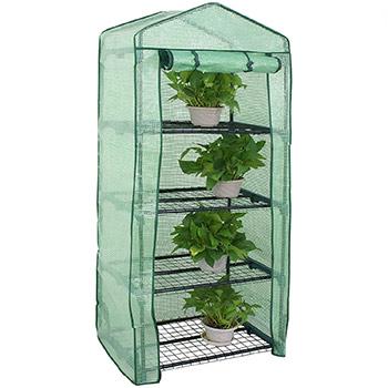 A single Nova Microdermabrasion Mini Greenhouse