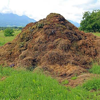 speed up your compost pile by avoiding huge piles of compost