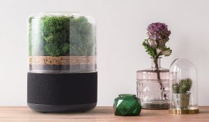 Featured image for A Breath of Fresh Air From A Sustainably Made Air Purifier article