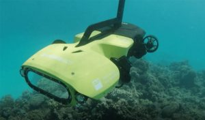 Featured image for A Tiny Robot Brings New Hope To Coral Reefs article