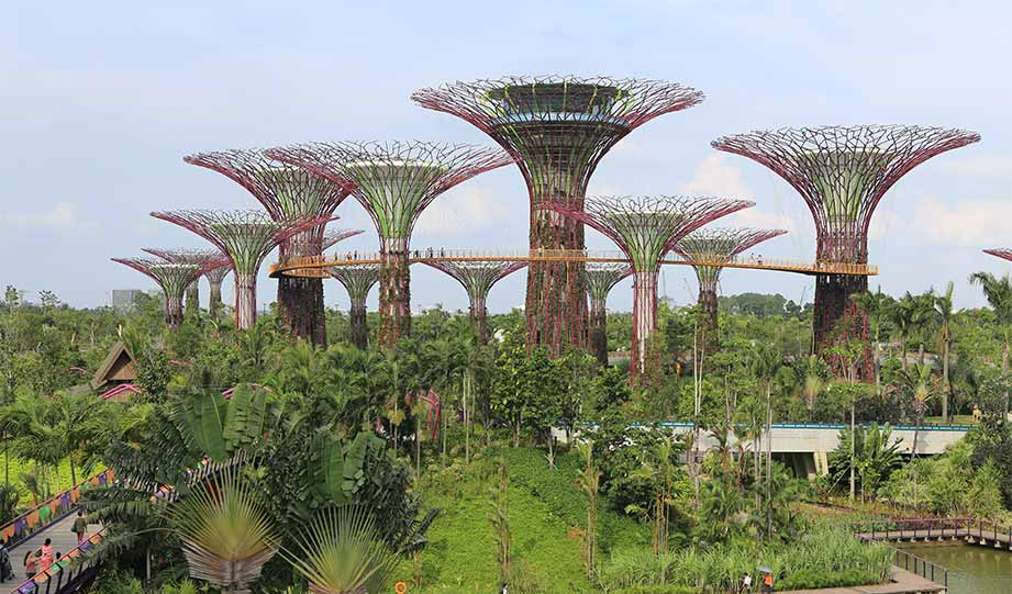 Featured image for Building A Greener Future Economy Using Build Back Better article