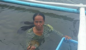 Featured image for Tapping Into The Wisdom Of Indigenous Women In The Philippines To Conserve Marine Life article
