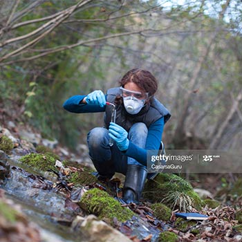 Test tube being held by a woman in the middle of a forest