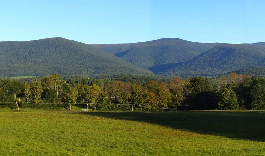 Featured image for 1,200 Acres In Vermont's Taconic Mountains Now Under Protection article