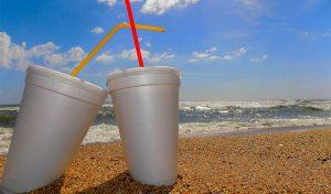Featured image for Hawaiian Kids Raising Awareness Of Ocean Plastic article