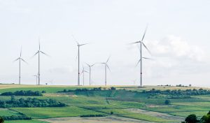 Featured image for Renewables Will Overtake Coal As Top Power Source in Next 5 Years article