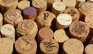 Featured image for Using Eco-Friendly Cork As A Building Material article