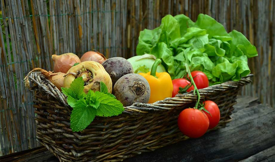 Featured image for Mail-Delivered Produce Can Help Both People and Nature article