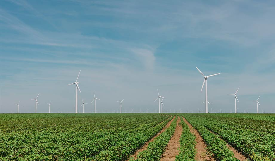 Featured image for Biden Administration Approves the Biggest Wind Farm in the U.S. and It's Off Martha's Vineyard article
