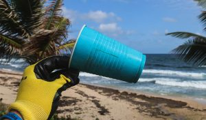 Featured image for Break Free From Plastic Pollution Act Reintroduced article