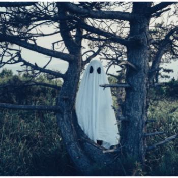 Eco-friendly Halloween Decorations