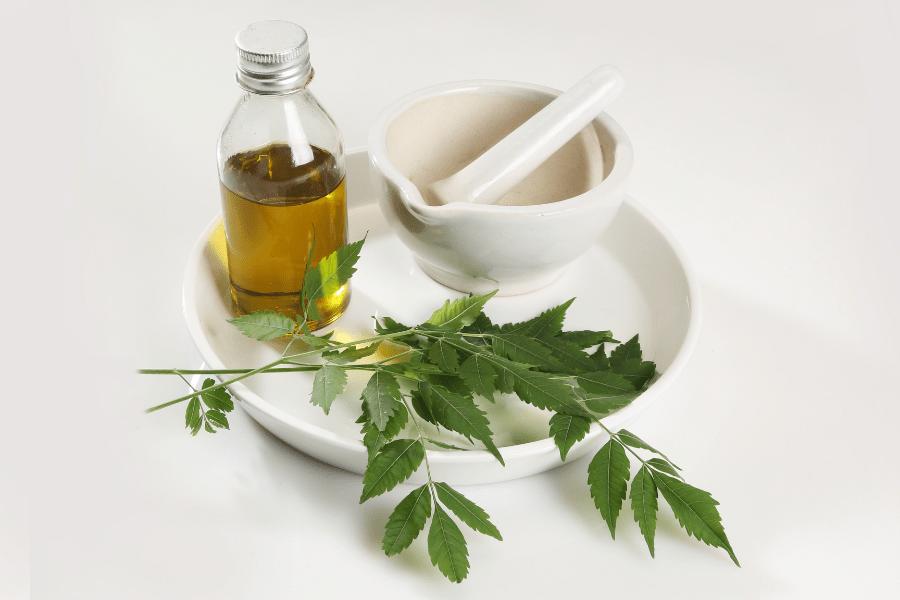 neem oil Natural Pesticides